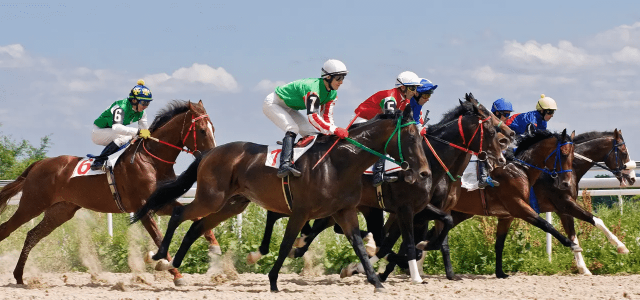 fixed odds horse racing betting